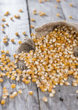 Dried Maize Royalty Free Stock Photography