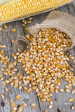 Dried Maize Stock Photography