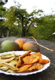 Dried mango. Fresh dried sweet mango in a dish. Mango is out of focus as background Royalty Free Stock Photo