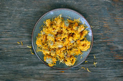 Dried marigold Stock Photography