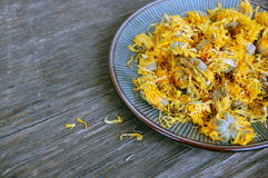 Dried marigold Stock Images