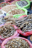 Dried Marine Products for Sale at Market, Nepal Royalty Free Stock Image