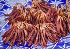 Dried meat pieces. For sale in the market Laos stock photography
