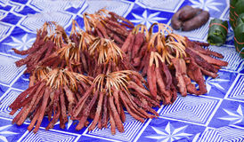 Dried meat pieces. For sale in the market Laos royalty free stock photo