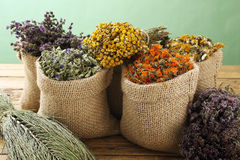 Dried medical herbs. Various dried medical herbs and flowers, and herbal tea royalty free stock images