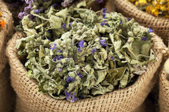 Dried medical herbs. Various dried medical herbs and flowers, and herbal tea stock photography