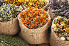 Dried medical herbs. Various dried medical herbs and flowers, and herbal tea stock images