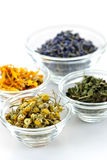 Dried medicinal herbs. Bowls of dry medicinal herbs on white background Stock Photos