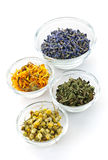 Dried medicinal herbs. Bowls of dry medicinal herbs on white background Stock Images