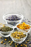 Dried medicinal herbs. Assortment of dry medicinal herbs in glass bowls Stock Image