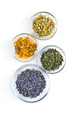 Dried medicinal herbs. Bowls of dry medicinal herbs on white background from above Royalty Free Stock Photography