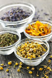 Dried medicinal herbs. Assortment of dry medicinal herbs in glass bowls Stock Images