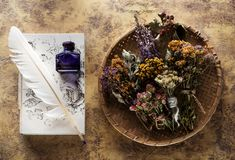 Dried medicinal herbs and herbal tea, recipe book and inkwell with feather. royalty free stock photography