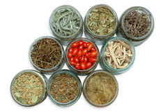 Dried medicinal plants in jars. On white background Stock Image