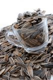 Dried Melon Seeds Series 03 Royalty Free Stock Photos
