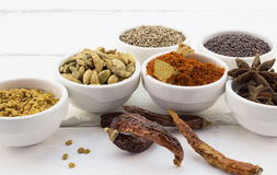 Dried Middle Eastern spices on white wood background Royalty Free Stock Photos