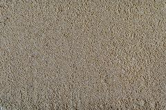 Dried millet groats dull yellow color. Scattered evenly on a surface stock photography