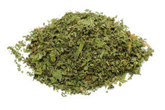 Dried Mint Royalty Free Stock Photography