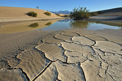 Dried Mud. And rain pool with reflections of mountains, Death Valley National Park, California, USA Stock Photo