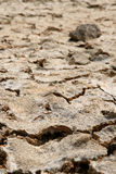 Dried mud. Dried, cracked and muddy background Stock Photo