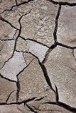Dried mud. Stock Photography