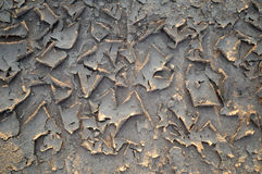 Free Dried Mud Royalty Free Stock Photo - 21495215