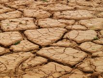 Dried mud. Cracked, parched land. Dried mud Royalty Free Stock Photography