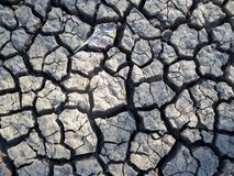 Dried mud. Dried cracked mud after the water has gone Stock Image