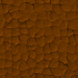 Dried Mud Cracks Royalty Free Stock Photo