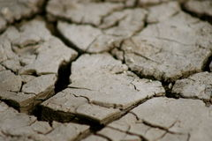 Dried mud or dirt Stock Images