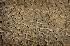 Dried Mud Dirt Drought Parched Ground Royalty Free Stock Images