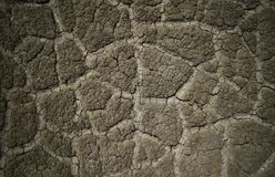Dried mud after the eruption of a mud volcano royalty free stock images