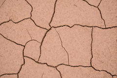 Dried mud that has cracked into a interesting pattern. Royalty Free Stock Photos