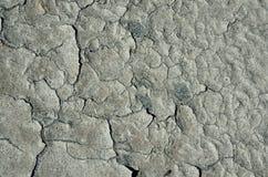 Dried mud Stock Photos