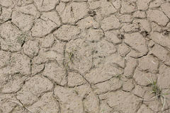 Dried mud near the river dry year Stock Photo