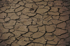 Dried mud near the river dry year Stock Photos