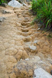 Dried Mud Steps Stock Image