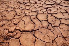 Free Dried Mud Texture Royalty Free Stock Photo - 106130595