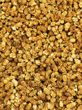 Dried mulberries Royalty Free Stock Images