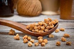 Dried mulberries Royalty Free Stock Image