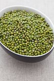 Dried mung beans Stock Photo
