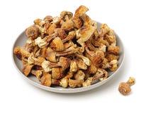 Dried Mushroom Stock Image