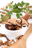 Dried mushroom Royalty Free Stock Photos