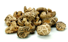 Dried Mushroom. Used in chinese cooking Royalty Free Stock Photo