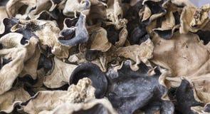 Dried mushroom at farmer market Stock Image
