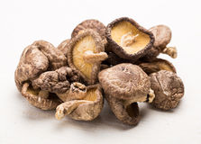 Dried mushroom Royalty Free Stock Images