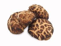 Dried mushroom Royalty Free Stock Image