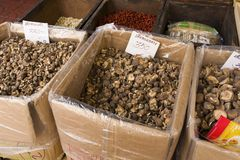 Dried Mushrooms. For sale in a shop Stock Image