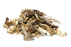 Dried Mushrooms. Stock Image