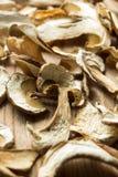 Dried mushrooms, alternative medicine. Vertically stock image